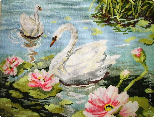 Вышивка крестом: Лебеди фото 2