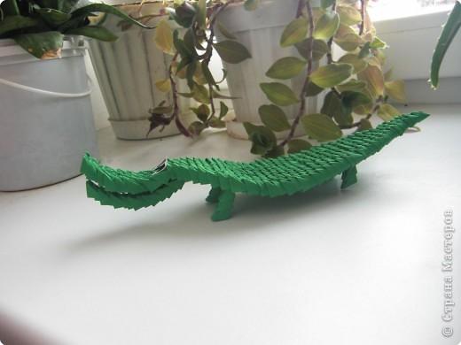 Оригами модульное: Крокодил фото 1