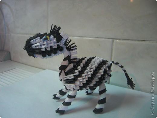 Попробовала сделать зебру. фото 4
