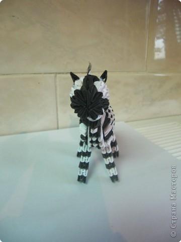 Попробовала сделать зебру. фото 2