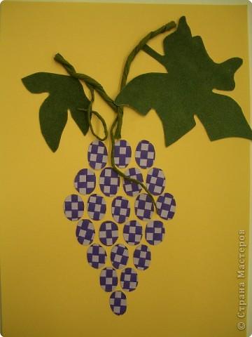 Полотняное плетение. Ягоды и фрукты. фото 9