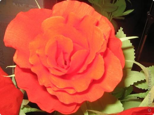 Моделирование: Розы фото 3