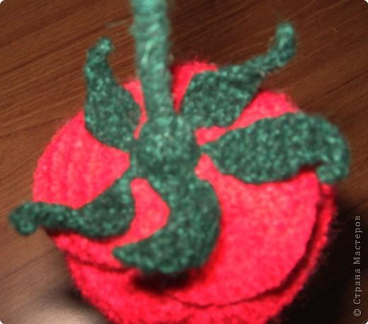Ваза с розами. Вам потребуются: нитки вязальные (красного, белого, зеленого цвета), нитки «Ирис», катушечные нитки №30 белого цвета, лента для вышивки, пайетки, крючок №2,5; 1,5, клей ПВА, проволока для стебельков розы и гипсофилы. фото 5