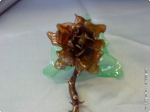 цветок из пластиковой бутылки. Мальчики 7 класс фото 3