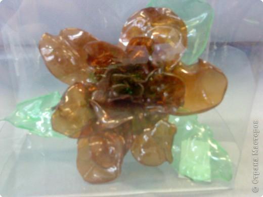 цветок из пластиковой бутылки. Мальчики 7 класс фото 1