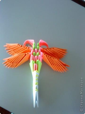 Оригами модульное: Мои стрекозки фото 3