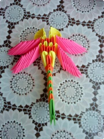 Оригами модульное: Мои стрекозки фото 1