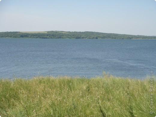 Пшеничные поля... фото 4