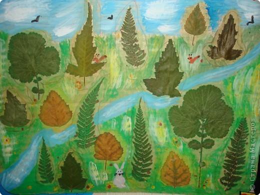 Аппликация: лес