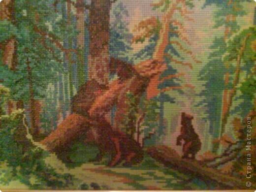 Вышивка крестом: Утро в сосновом лесу