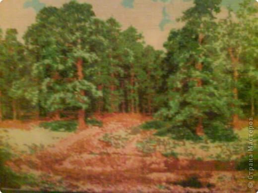 Вышивка крестом: Лес