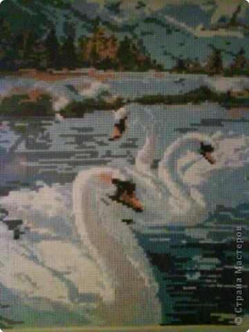 Вышивка крестом: Лебеди