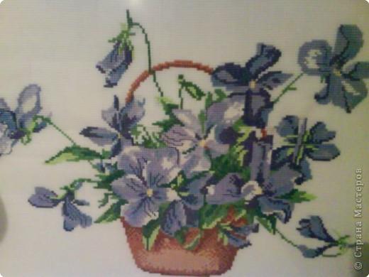 Вышивка крестом: Цветы