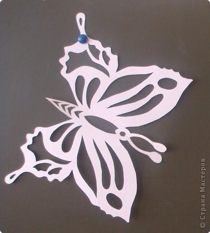Вырезать одинаковых по форме, но разных по цвету заготовок в виде бабочек.  На оду бабочку 3-4 штучки.