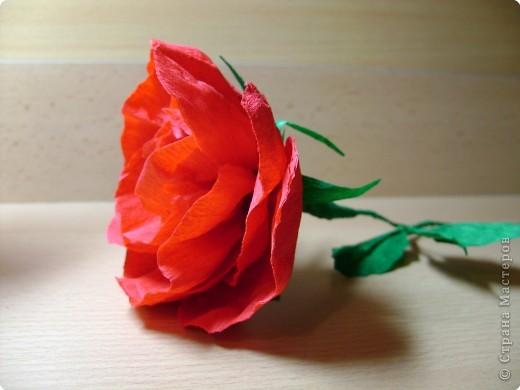 Кусудама, Моделирование: Пион или роза? фото 3