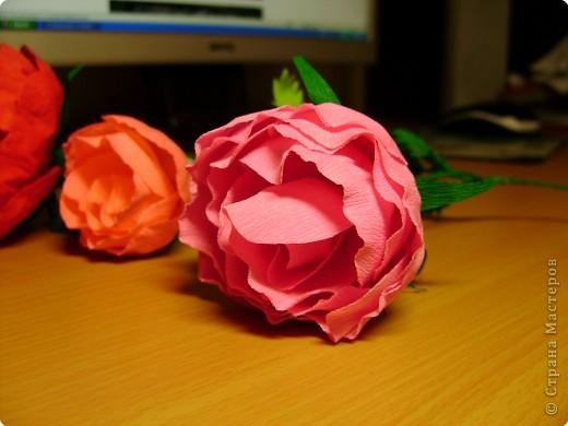 Моделирование: Цветы фото 1