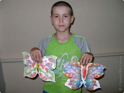 Бабочки фото 15