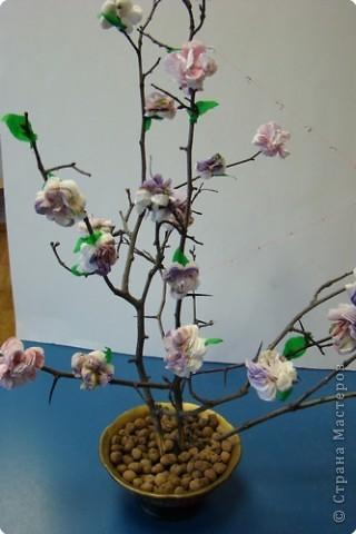 Бумагопластика: Цветущая ветка