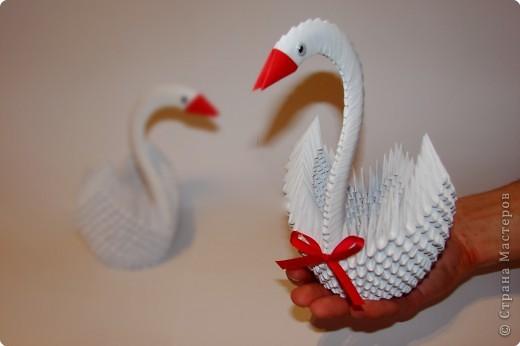 Оригами модульное:  совет да любовь фото 1