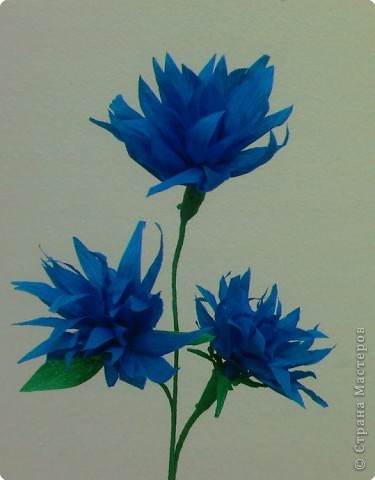 Моделирование: Цветы из бумаги фото 2