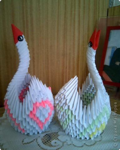 Оригами модульное: Ах эти лебеди и павы!!! фото 1