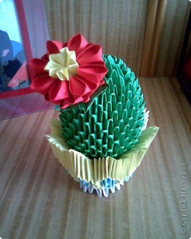 Оригами модульное: Мои кактусы фото 3