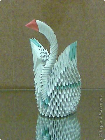 Лебеди оригами. фото 2
