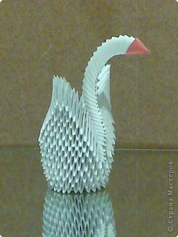 Лебеди оригами. фото 1