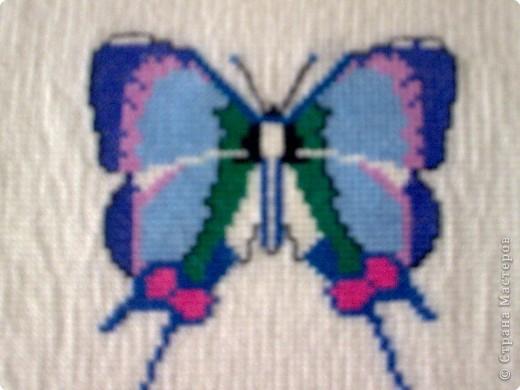 Бабочка №1 фото 2