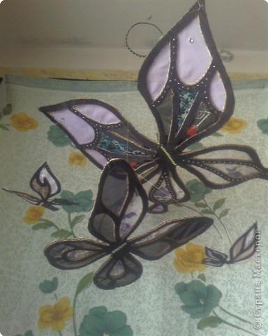 Витраж: Воздушные бабочки из картона и шифона фото 1