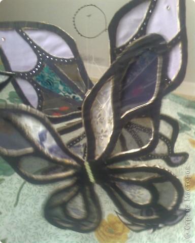 Витраж: Воздушные бабочки из картона и шифона фото 2