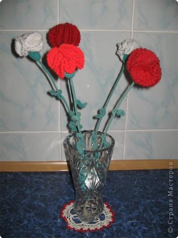 Гвоздики в вазе. фото 1