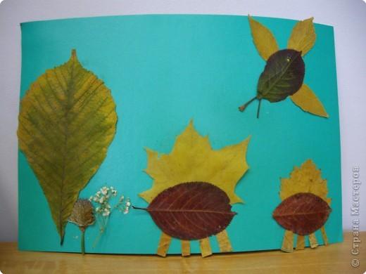 """Аппликация: """"Осенние прогулки..."""" фото 3"""
