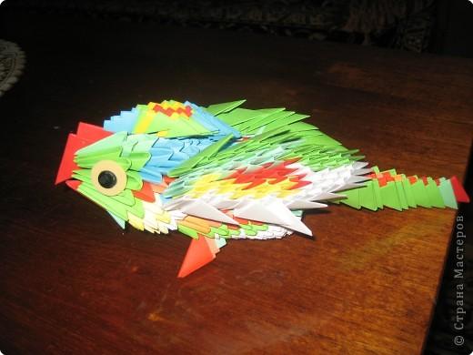 Оригами модульное: попугай