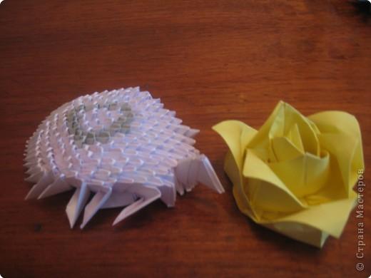 Оригами модульное: черепашка