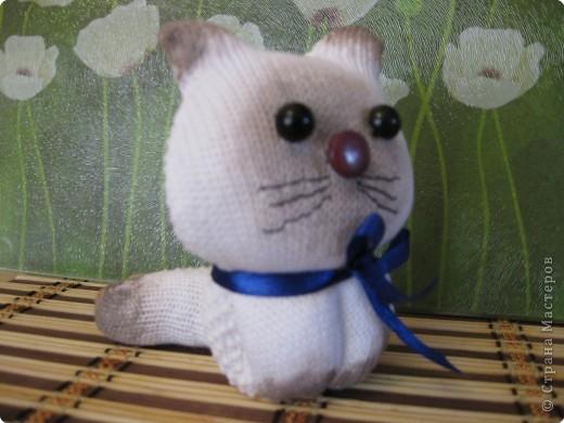 Котенок из перчаток фото 1