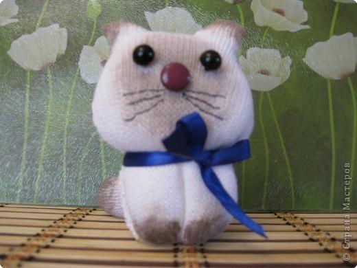 Котенок из перчаток фото 2