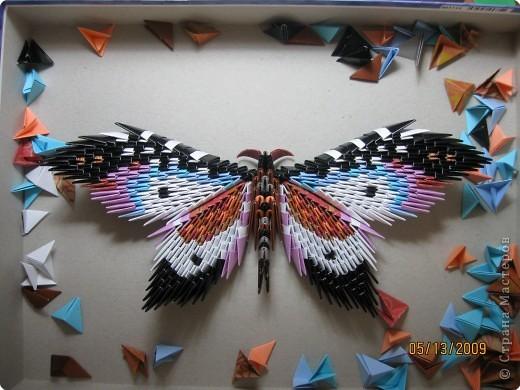 Модульное оригами - Бабочка-1.