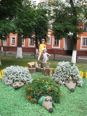 Фестиваль цветов (окончание) фото 4