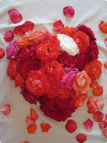 Сердце сложено мною из розовых цветков фото 1