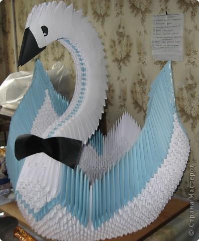 Оригами модульное: малютка весом в 24кг.