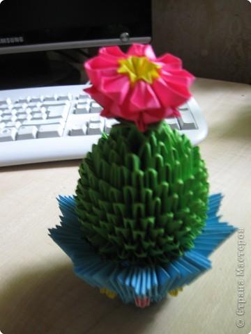 Оригами модульное: Вот и мой кактус зацвел! фото 2