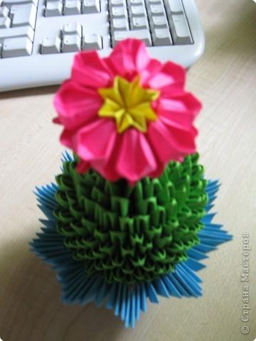 Оригами модульное: Вот и мой кактус зацвел! фото 1