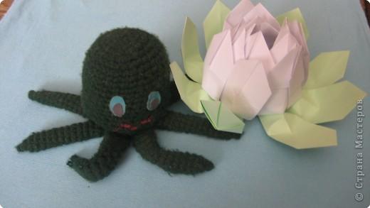 теперь есть где поселиться моему осьминогу....  фото 1
