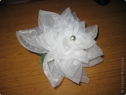 Шитьё: Цветок из кругов фото 1