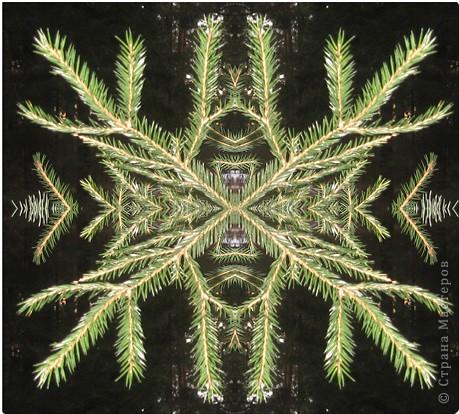 если отобразить часть фото симметрично, получаются интересные картинки фото 1