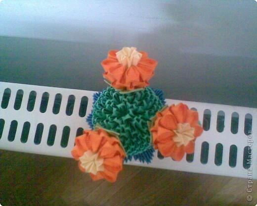 Оригами модульное: Мой кактус фото 2