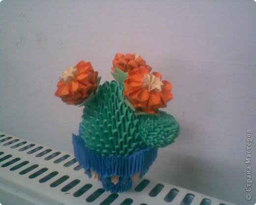 Оригами модульное: Мой кактус фото 1