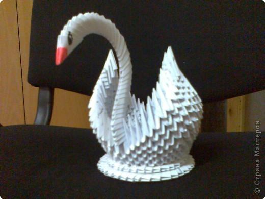 Оригами модульное: Еще один лебедь