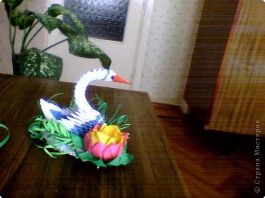 Оригами модульное: lebedi фото 2